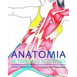Anatomia w treningu szybkości