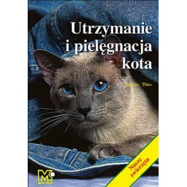 Utrzymanie i pielęgnacja kota